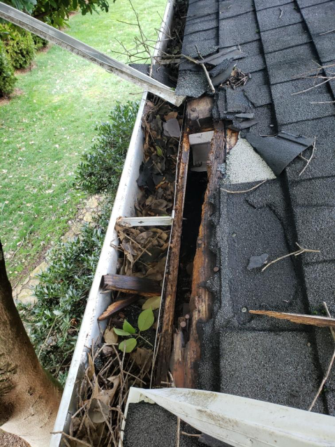 Knoxville, TN -  A raccoon was entering a house through the roof. Mobley Brothers Roofing and Renovation repaired the hole the raccoon made in the roof by replacing some of the decking and installing GAF Timberline HD  Charcoal shingles, and GAF Storm Guard Leak Barrier.