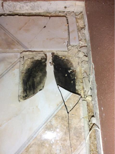 Sun City, AZ - Working on Estimate for Mold Abatement for a family in Surprise.