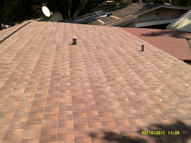Tampa, FL - Timberline High Definition Shingle Color: Barkwood