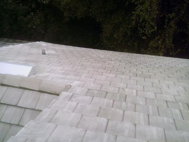 Tampa, FL - Eagle Bellaire Concrete Tile Color: Royal Palm