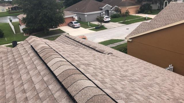 Riverview, FL - GAF Timberline HD Color: Driftwood Drip: White