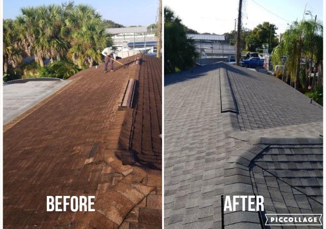 Palm Harbor, FL - Affordable residential roofing 