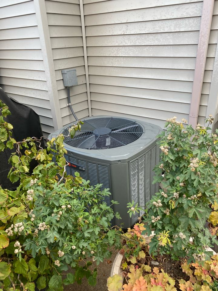 Albany, OR - Trane air conditioner tune up