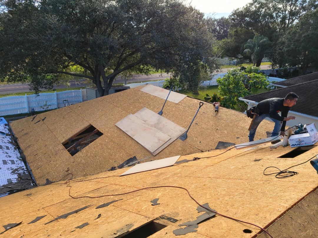 Seffner, FL - Starting the installation of a new roof today in Seffner. Hopefully we will start the installation of GAF American Harvest Amber Wheat Shingles this afternoon.