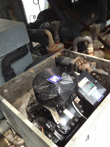 Wallingford, CT - Replaced 3 phase 480 volt, 60 hp copeland compressor on rack system.