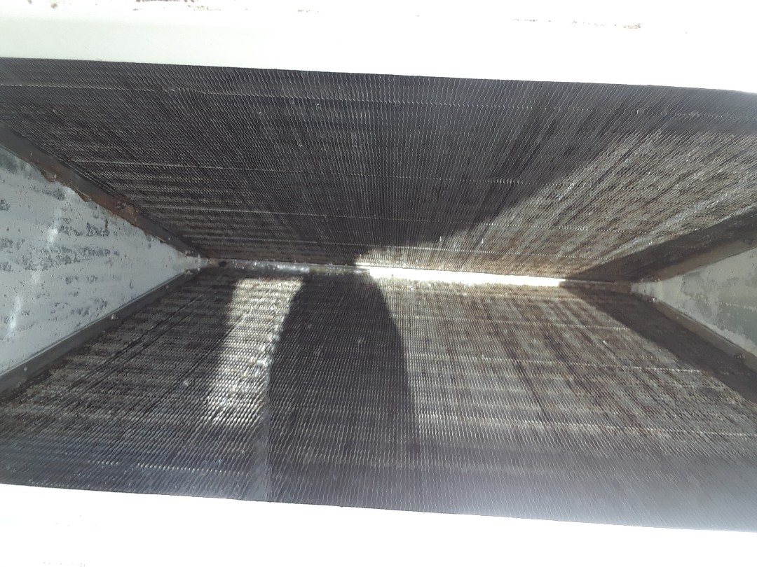 Winter Garden, FL - Evap coil after pulling clean