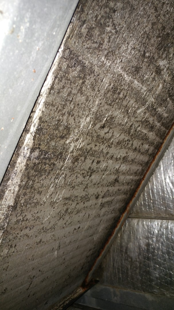 Winter Garden, FL - Quoting a duct cleaning and system cleaning
