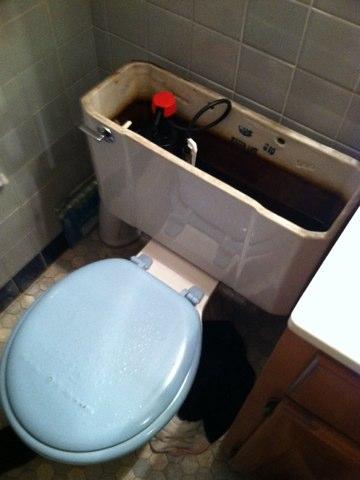 Springfield, PA - Toilet plumbing repair