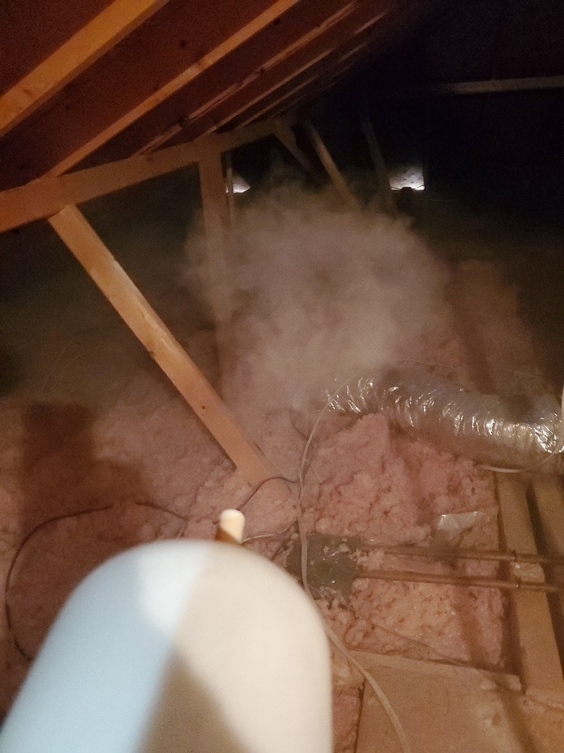 Hidalgo, TX - Taking care of attic as for all your pest call bug works