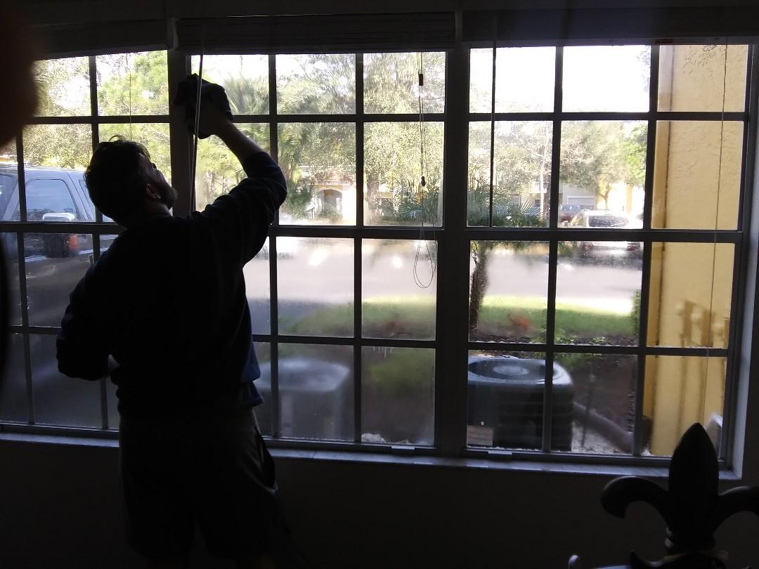 Sarasota, FL - Mold remedial/windows