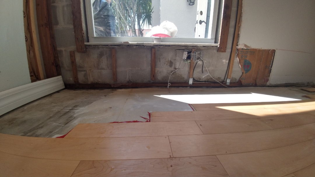 Sarasota, FL - Mold remediation
