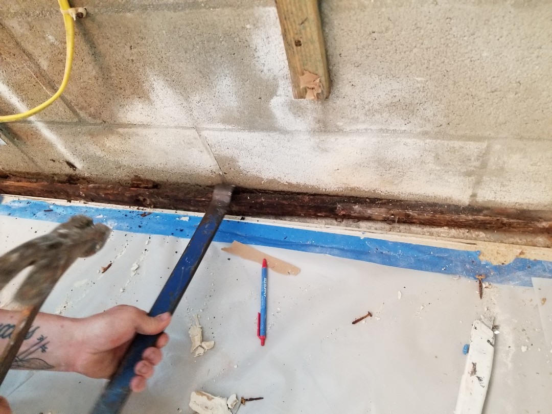 Venice, FL - Air duct cleaning and mold remediation