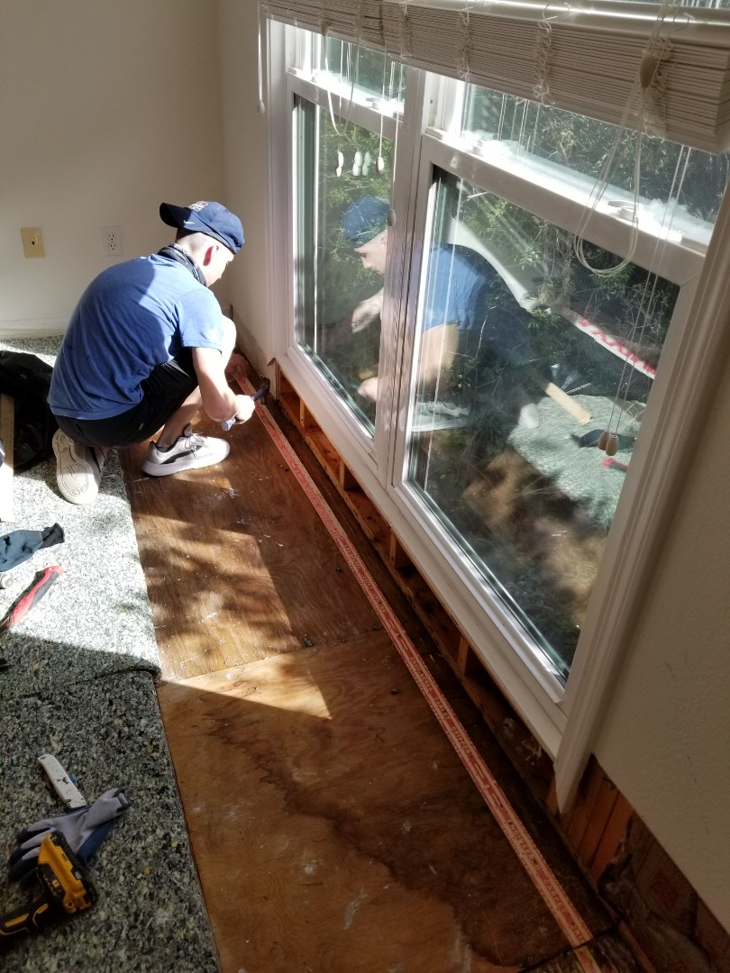 Sarasota, FL - Mold remediation. Drywall repair and painting.