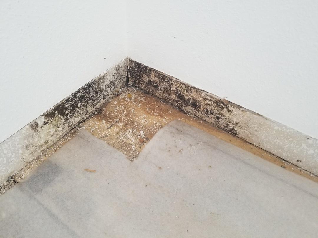Sarasota, FL - Mold remediation, hardwood floor removal.