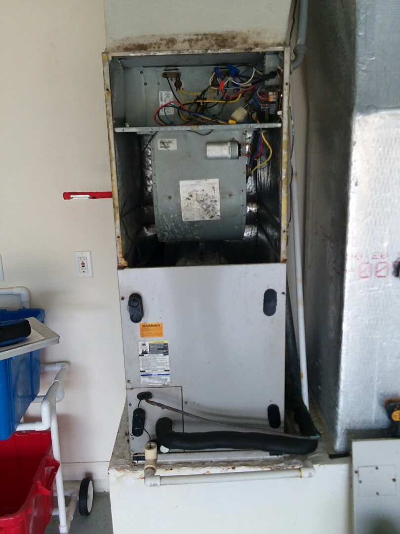 Sarasota, FL - Payne air conditioner maintenance and duct cleaning inspection