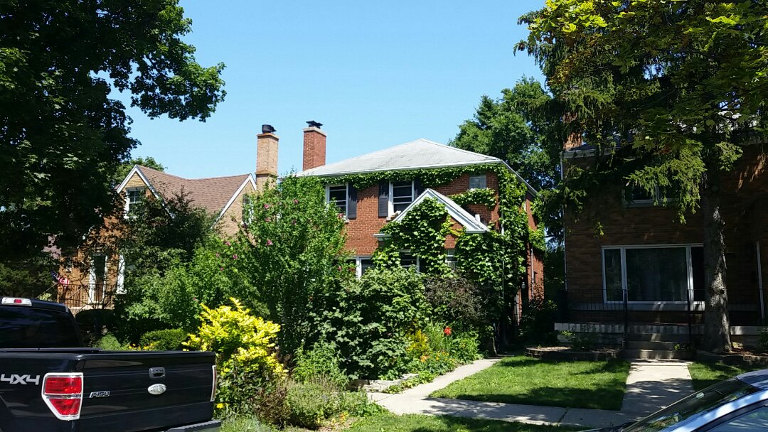 Chicago, IL - Estimate for roof and gutter replacement.