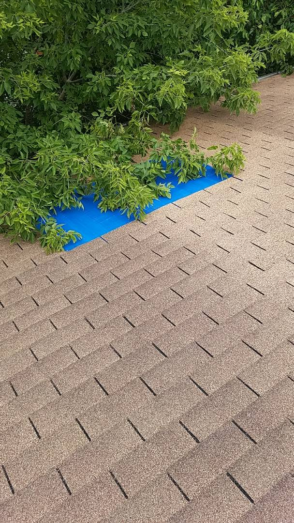 Schaumburg, IL - Estimating repair on a 3 tab asphalt shingle roof