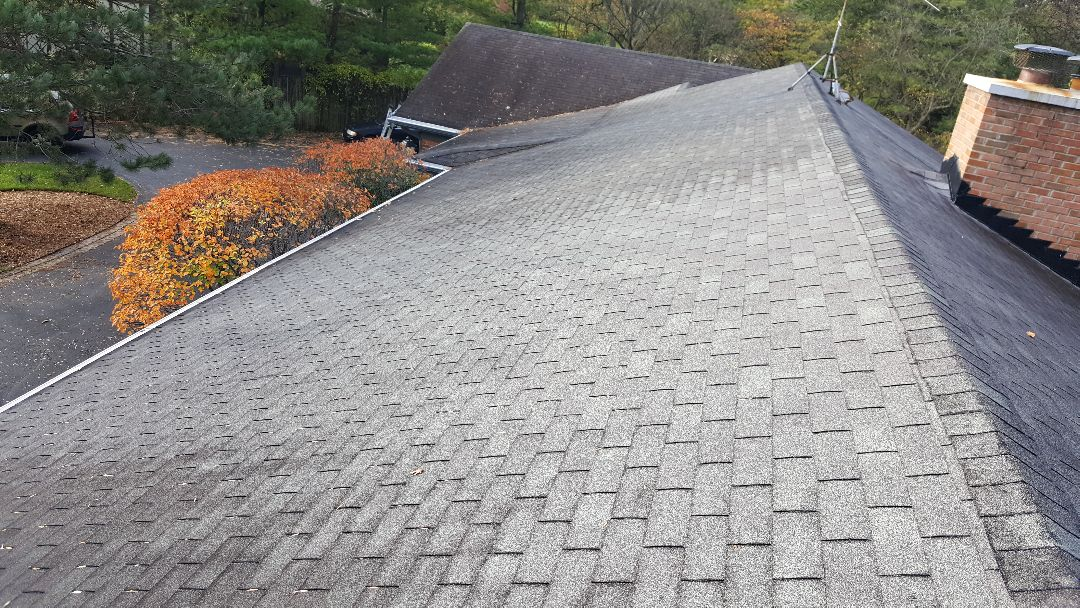 Shingle roof repair estimate
