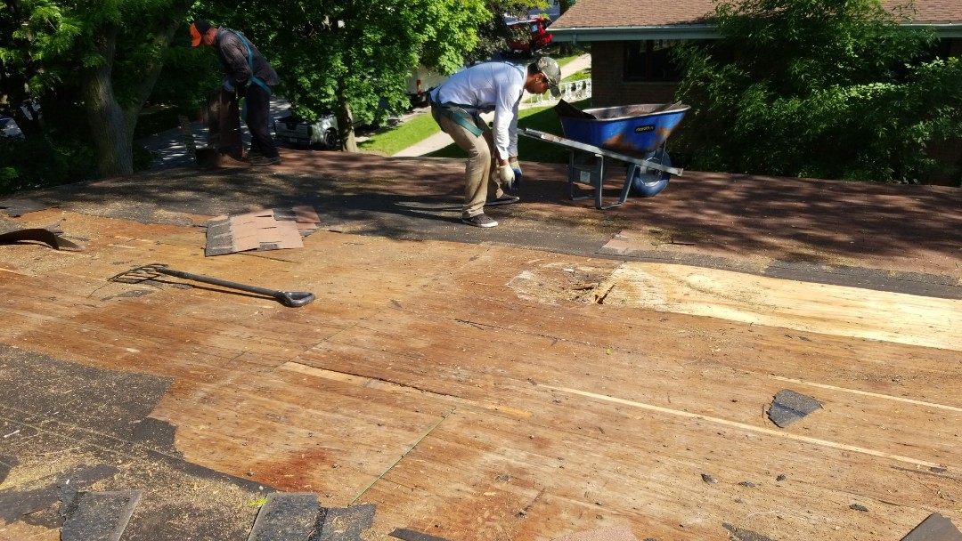 Lincolnwood, IL - Starting roof replacements all new wood decking
