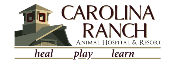 Carolina Ranch Animal Hospital & Resort