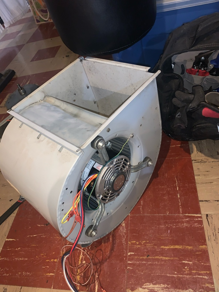 Furnace service repair Tempstar Furnace, Noise from furnace New Blower Motor needed