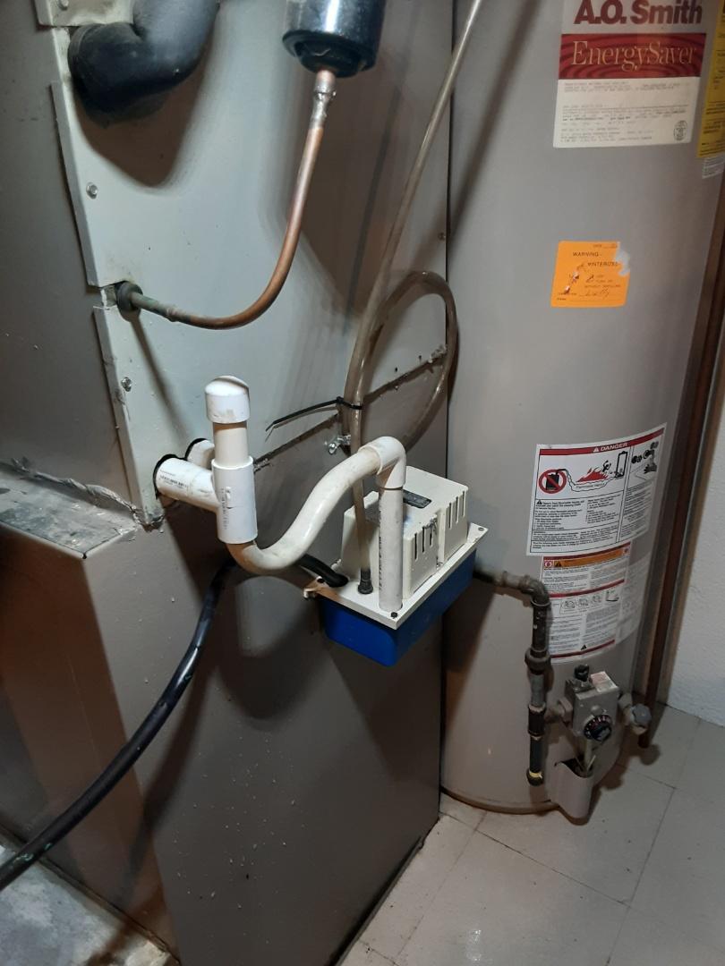 Oak Park, MI - Condesate pump cleaning