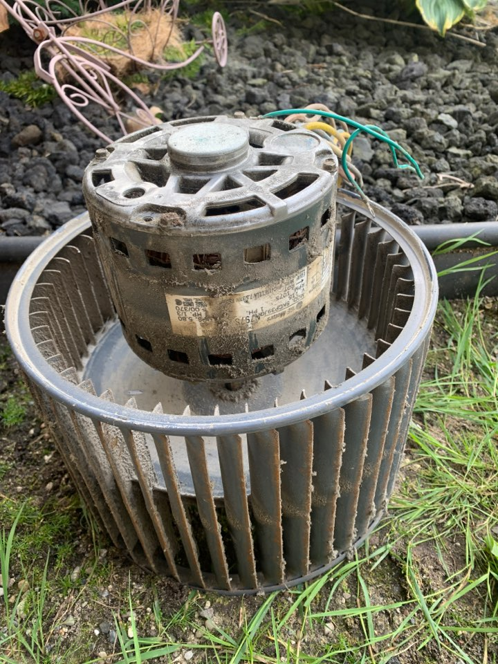 Carrier, No Cooling: Seized Blower Motor