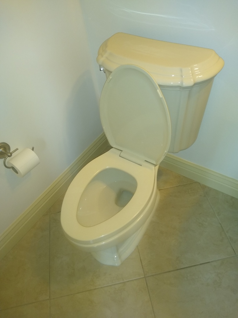 Dardenne Prairie, MO - Toilet reset