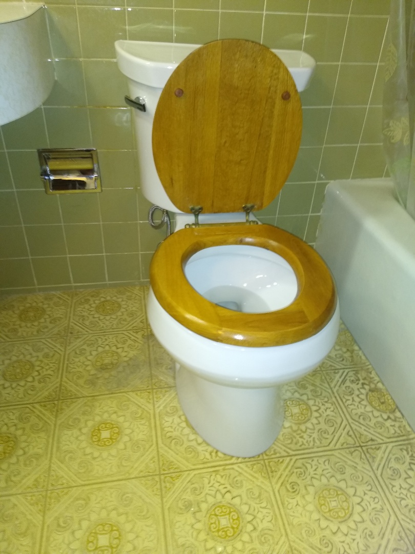 St. Peters, MO - Toilet