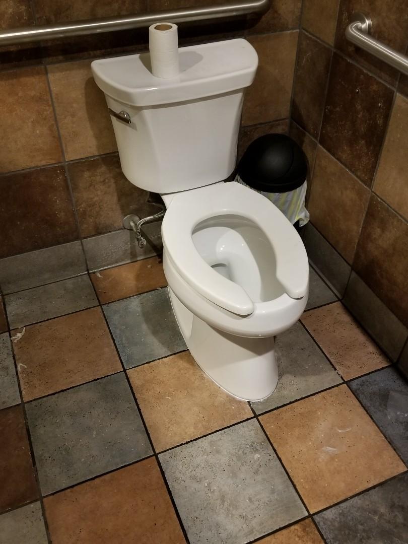 Creve Coeur, MO - toilet