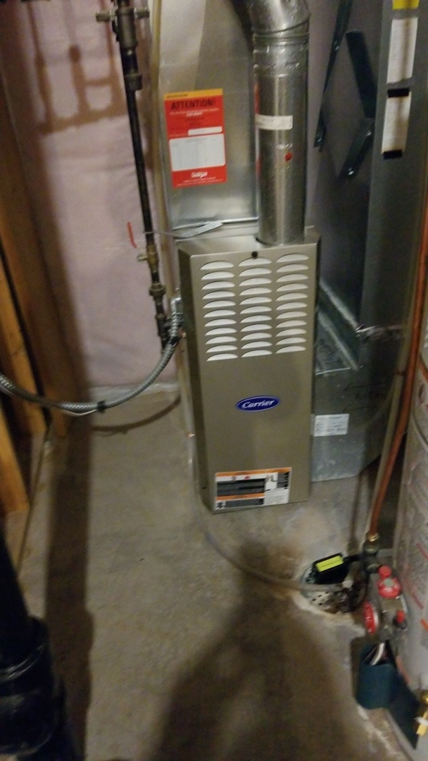 Red Wing, MN - Carrier gas furnace service