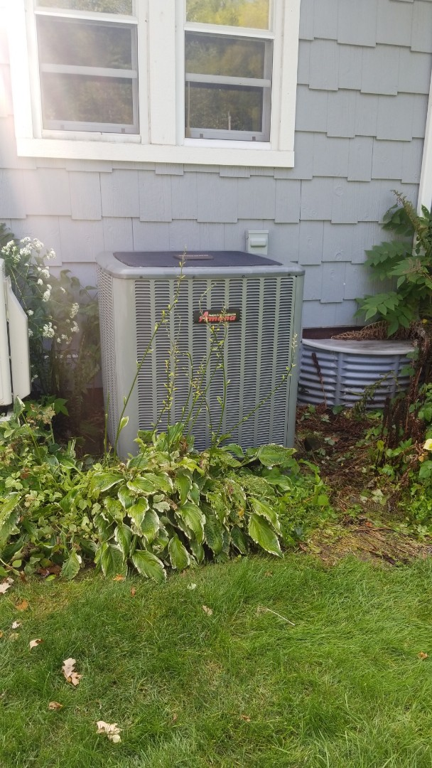 Stockholm, WI - Amana air source heat pump service