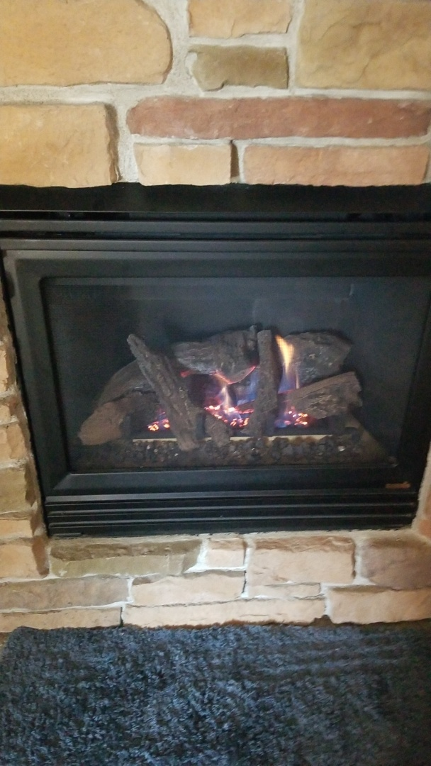 Cannon Falls, MN - Heat N Glo gas fireplace repair
