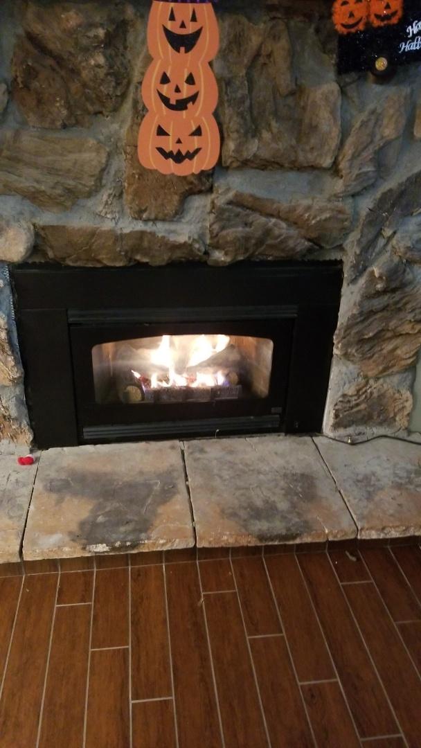 Newport, MN - Kozy heat insert service