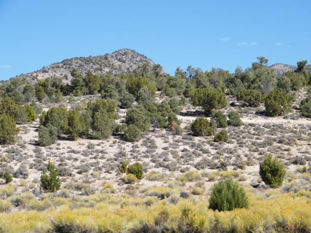 """Ely, NV - 5 Acres for sale SACRAMENTO PASS. """"A LOT TO LOVE"""". The perfect site for your future cabin get-a-way. Five sublime acres with views and clean air that must be experienced. The Juniper and Pinyon Pine landscaping is a courtesy of Mother Nature. Although private, this land is located within 30 minutes of Great Basin National Park which is home to the majestic 13,159' Wheeler Peak. This land can be purchased with a low down of 25%, 7% interest, 7 years, with approximate monthly payments of $509.38. Located in White Pine County. Map info: Parcel P-3, Map 764, File 315717 - T15N, R68E, Sec. 21, MDB&M. Directions: From the Ely ...McDonalds head east for approximately 45 miles on US-50E / US-6E aka the Grand Army of the Republic Hwy."""