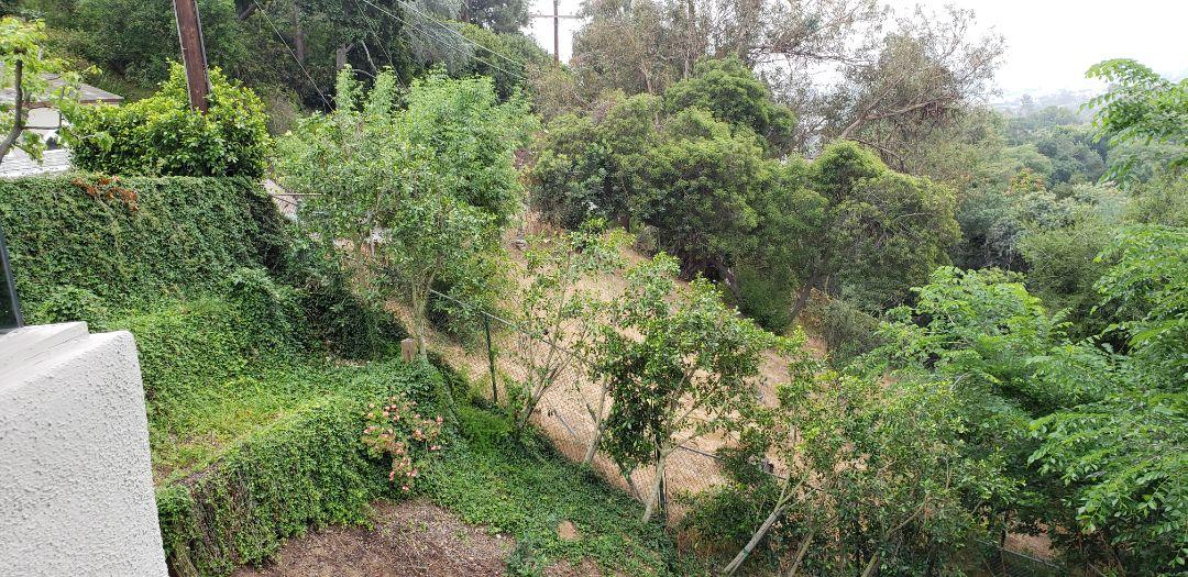 Los Angeles, CA - Los Feliz Hillside Foundation inspection.