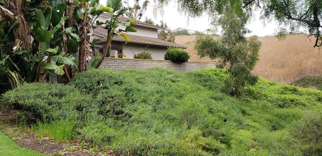 """San Clemente, CA - Hillside foundation inspection with -3.2"""" of settlement."""