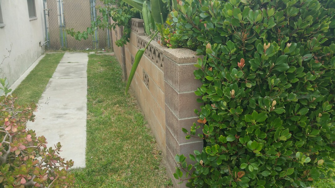 Lakewood, CA - Looking at repairing wall that is leaning