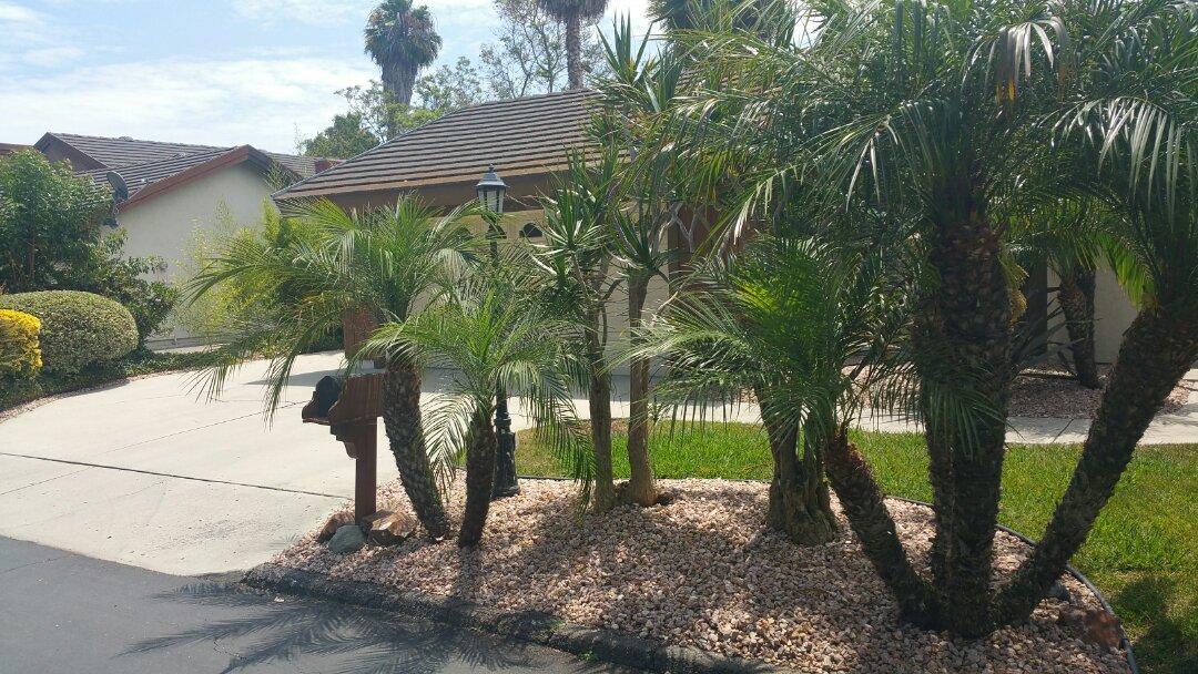 Vista, CA - Home stabilization