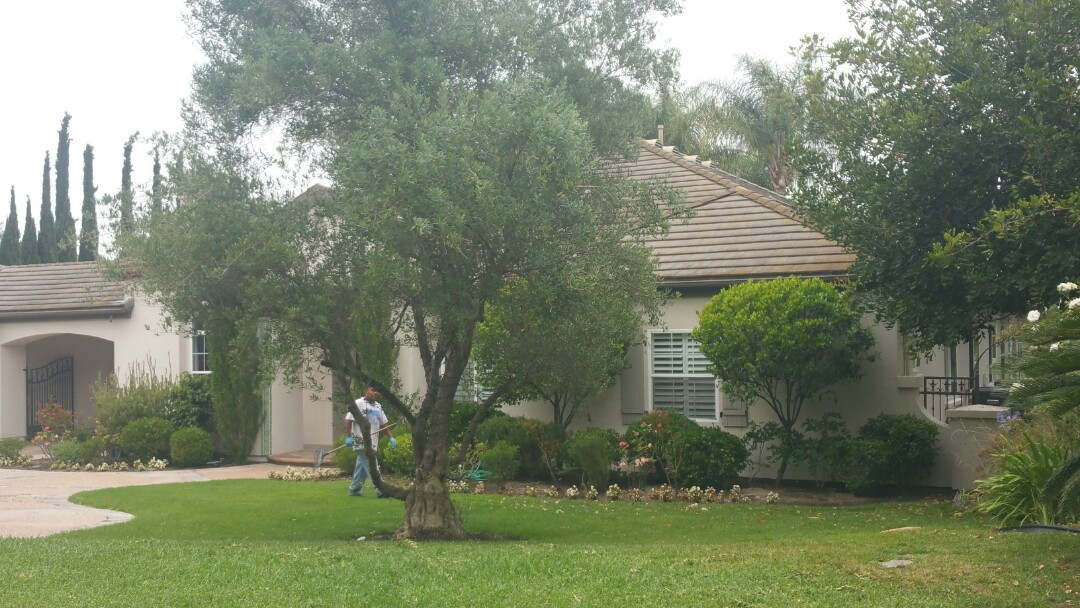 San Juan Capistrano, CA - Foundation inspection for new buyer of home