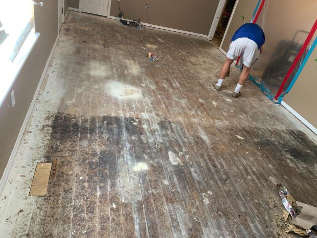 Muskogee, OK - Long term water damage repair in progress, home was badly damaged, today we put down the ply wood on the floors, contained the master bedroom to prevent further damage as we continue working!
