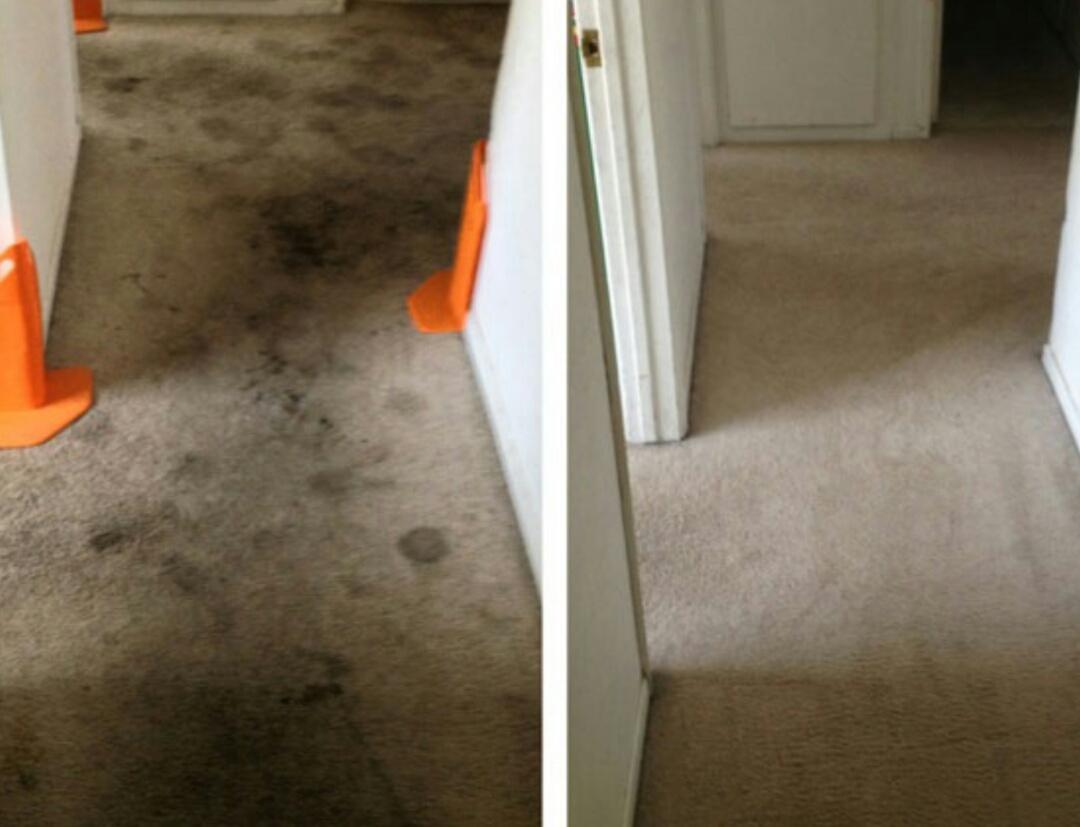 Portsmouth, VA - Chem-dry carpet restoration at its best!!!