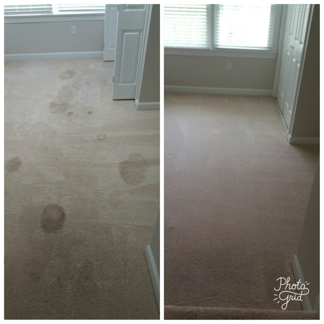 Poquoson, VA - Check out these before and afters... Pet urine removal treatment