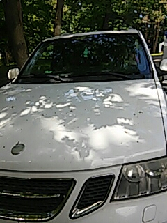 Saylorsburg, PA - Replaced windshield on Saab 9 7x for a customer at their house