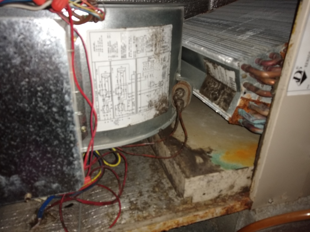 Charlotte, NC - Rheem heat pump tune up