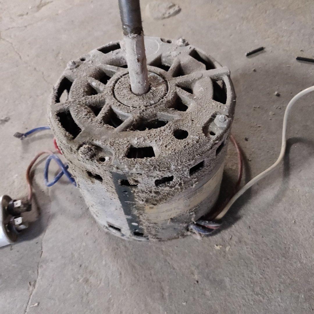 Battle Creek, MI - Replace blower motor on a rheem gas furnace.