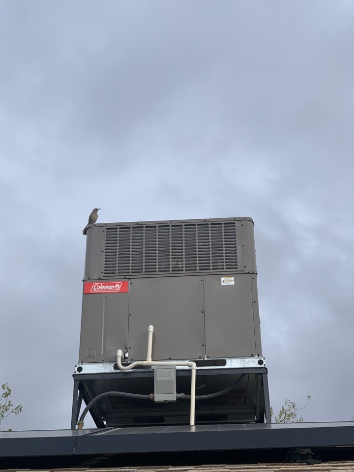 Phoenix, AZ - New 16 seer Coleman heat pump installed at north Phoenix home.