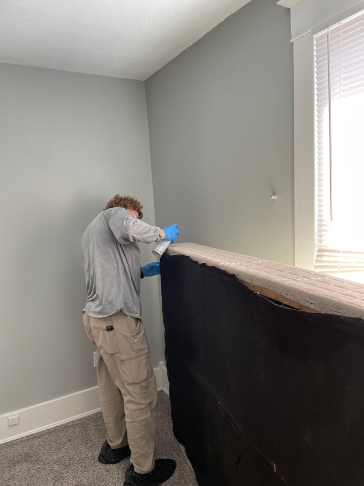 Grand Rapids, MI - Bedbug treatment, bedbugs hide in mattresses and box springs, but they can also be anywhere around the beds too.