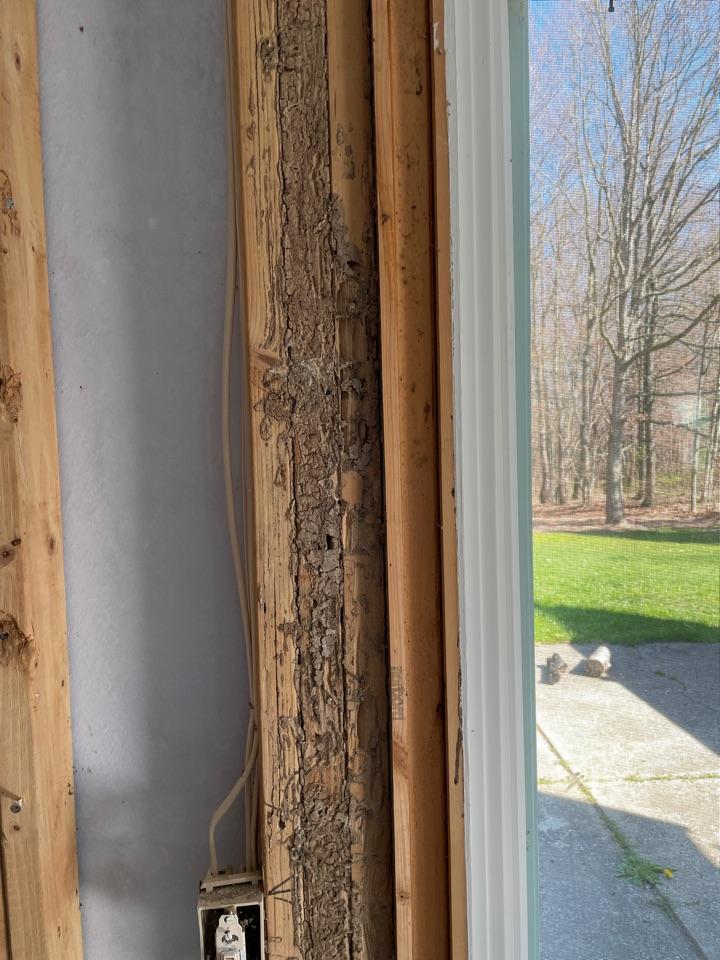 Rockford, MI - Termite inspection, termite damage around doorways.
