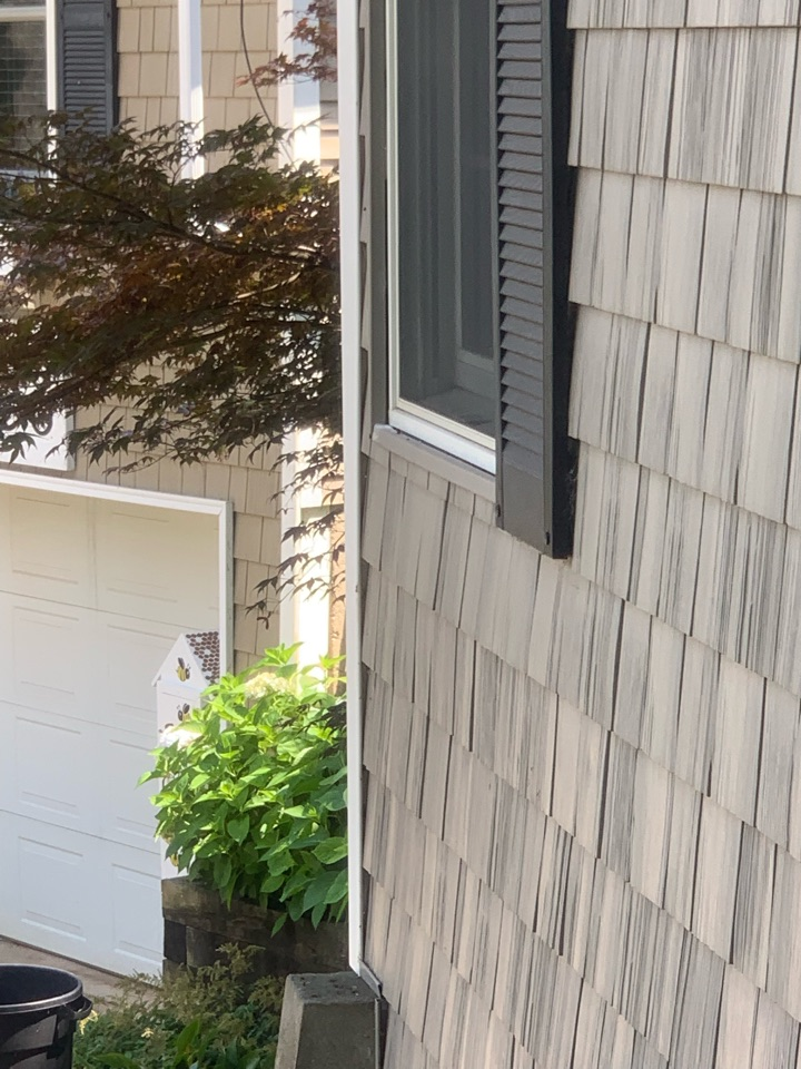 East Grand Rapids, MI - A customer called us because she needed an exterminator out to their house to get rid of bees that were underneath their kids window inside the wall where the bees built a nest. Our trusted pest control services took care of the pest problem and offer a guarantee that the bees won't come back.